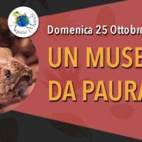 Un museo da Paura!